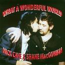 What a Wonderful World/Nick Cave & Shane MacGowan