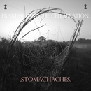 Stomachaches/frnkiero and the cellabration