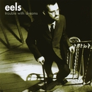Trouble With Dreams/Eels