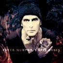I Spit Roses/Peter Murphy