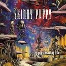 Spasmolytic/Skinny Puppy