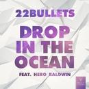 Drop In The Ocean (feat. Hero Baldwin)/22 Bullets