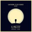 Hostage (Catching Flies Remix)/Klangstof