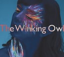 Into Another World/The Winking Owl