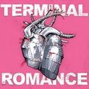 Terminal Romance/Matt Mays