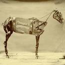 The Horse Comanche/Chadwick Stokes
