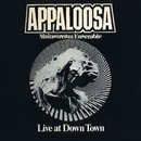 Live at Down Town/Appaloosa Mainstream Ensemble