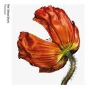 Release: Further Listening 2001 - 2004 (2017 Remaster)/Pet Shop Boys