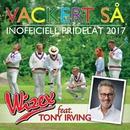 Vackert så (feat. Tony Irving) [Inofficiell Pridelåt 2017]/Wizex