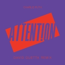 Attention (David Guetta Remix)/Charlie Puth