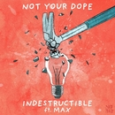 Indestructible (feat. MAX)/Not Your Dope