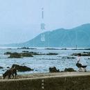 Ballad/Ronghao Li