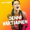 Keinu (Vain elämää kausi 7)/Jenni Vartiainen