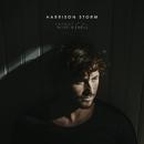 Change It All (Instrumental)/Harrison Storm