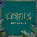 Only Animals (feat. Allyson Ezell)/OWLS
