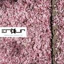 White Noise/Endur