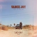 Lay It On Me (Said The Sky Remix)/Vance Joy