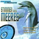 Stimmen des Meeres/Delta Music