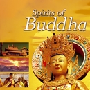 Spirits of Buddha/Dave Stern & Friends