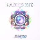 Kaleidoscope/donkeyboy