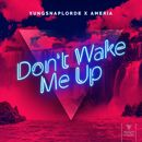 Don't Wake Me Up/YungSnapLorde & Ameria