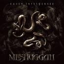 Catch Thirty Three/Meshuggah