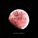 Bridges/Aisha Badru