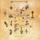 Mange Tout (Extended Version)/Blancmange