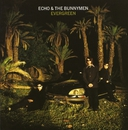 Evergreen (Expanded)/Echo And The Bunnymen
