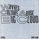 Big Cloud/Wavves and Culture Abuse