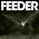 Fly/Feeder