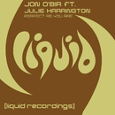 Perfect As You Are (feat. Julie Harrington)/Jon O'Bir