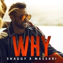 Why/Shaggy & Massari