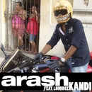 Kandi (feat. Lumidee) [Radio Edit]/Arash