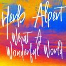 What A Wonderful World/Herb Alpert