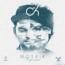 MOSAIK REMIXED/Camo & Krooked