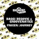 Frozen / Journey/Baggi Begovic & Groovenatics