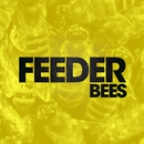 Bees (Alt. Mix)/Feeder