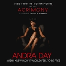 """I Wish I Knew How It Would Feel to Be Free (From Tyler Perry's """"Acrimony"""")/Andra Day"""