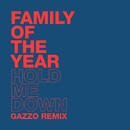 Hold Me Down (Gazzo Remix)/Family of the Year