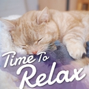 Time To Relax~くつろぎタイムに聞きたい癒しの洋楽~/Various Artists