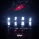 Numb to the Feeling/Chase Atlantic