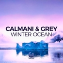 Winter Ocean/Calmani & Grey