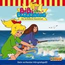 Folge 95: Die verbotene Hexeninsel/Bibi Blocksberg