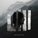 Feeling You/Harrison Storm