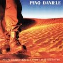 Non calpestare i fiori nel deserto (Remastered Version)/Pino Daniele