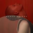 Black Spider (Origami Remix)/Kovacs