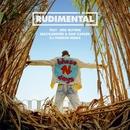 These Days (feat. Jess Glynne, Macklemore & Dan Caplen) [DJ Premier Remix]/Rudimental