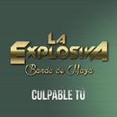 Culpable Tú/La Explosiva Banda De Maza