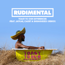 Toast to our Differences (feat. Jaykae, Cadet & Shungudzo) [Remix]/Rudimental